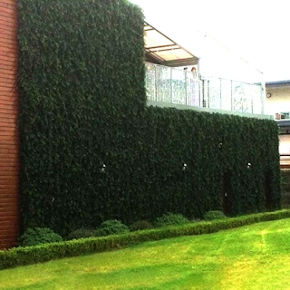 Artificial Buxus Hedge 2m x 1m x 0.3m
