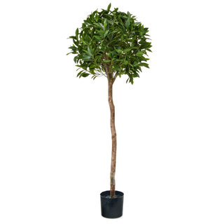 Artificial Bay Laurel Ball Tree 135cm with Natural Tree Trunk