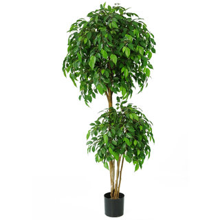 Artificial Ficus Natasha Tropical 150cm with Natural Tree Trunk