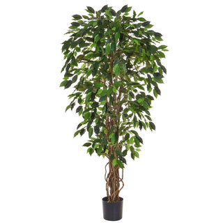 Artificial Ficus Liana Green 150cm with Natural Tree Trunk (Fire Retardant)