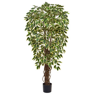 Artificial Ficus Liana Variegated 120cm with Natural Tree Trunk (Fire Retardant)