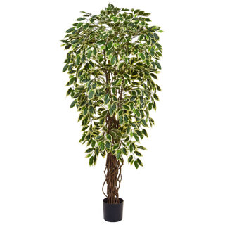 Artificial Ficus Liana Variegated 150cm with Natural Tree Trunk (Fire Retardant)