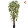 Artificial Ficus Liana Variegated 180cm with Natural Tree Trunk (Fire Retardant)/