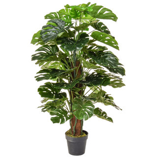 Artificial Monstera 120cm with Natural Tree Trunk
