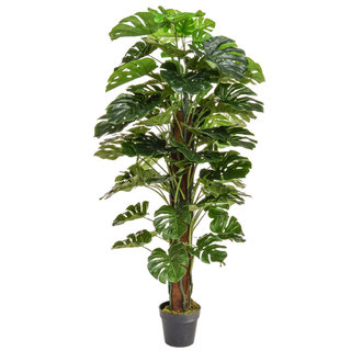 Artificial Monstera 150cm with Natural Tree Trunk