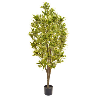 Artificial Dracaena Reflex 170cm with Natural Tree Trunk