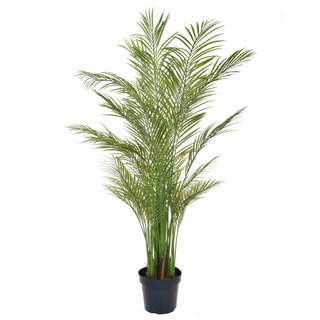 Artificial Areca Palm 180cm (Fire Retardant & UV)