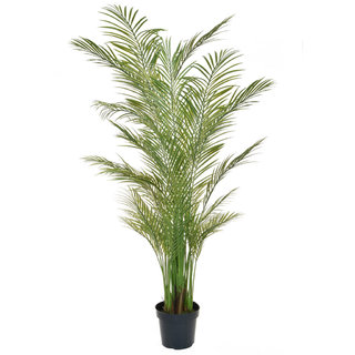 Artificial Areca Palm 210cm (Fire Retardant & UV)