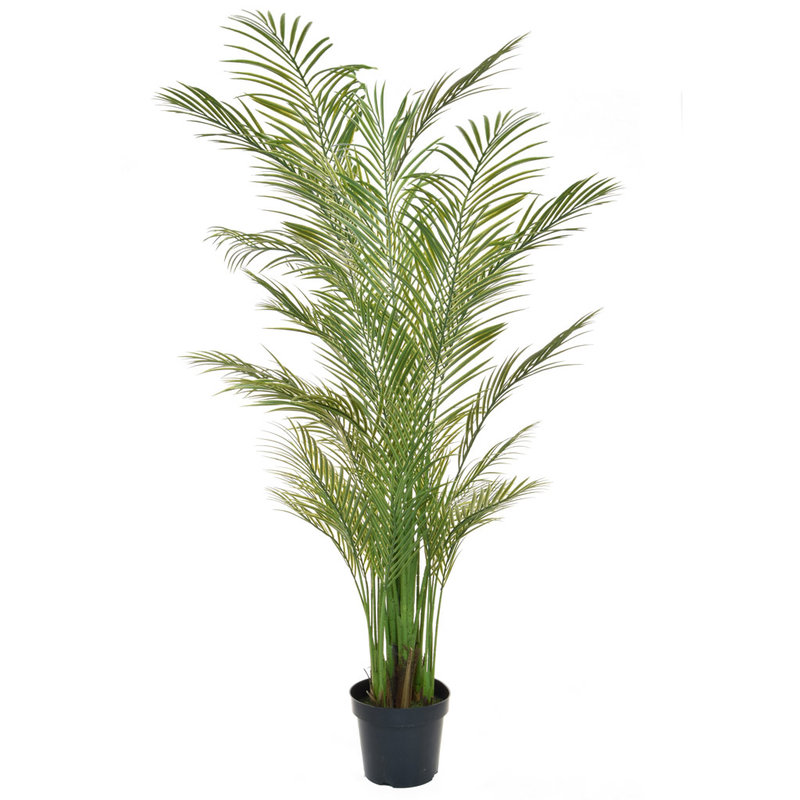 Artificial Areca Palm 210cm (Fire Retardant & UV)/