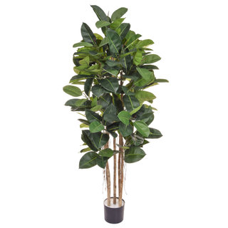 Artificial Ficus Elastica 170cm with Natural Tree Trunk