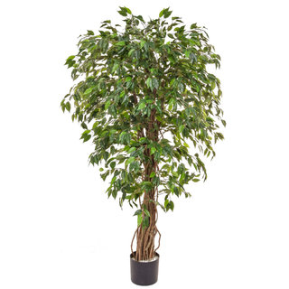 Artificial Ficus Liana Green 150cm with Natural Tree Trunk