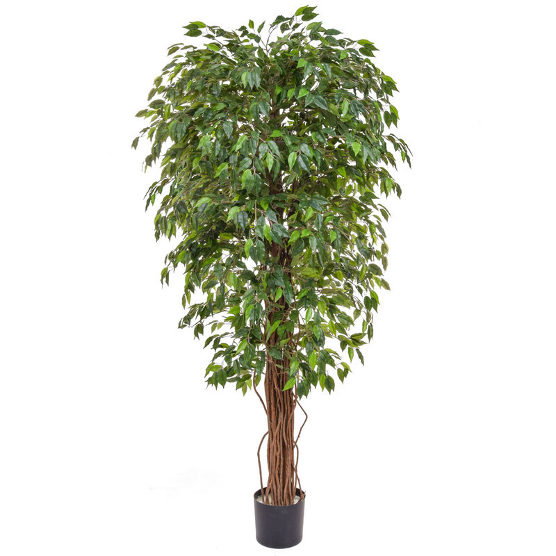 Artificial Ficus Liana Green 180cm with Natural Tree Trunk/