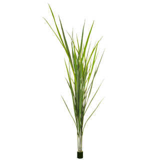 Artificial Grass Reed 180cm (Fire Retardant & UV)