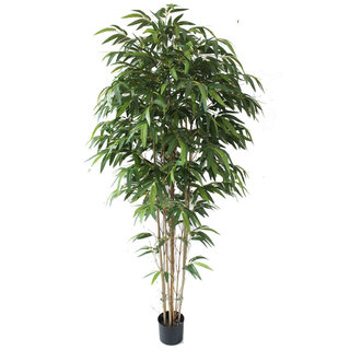 Artificial Bamboo Contract Green 180cm with Natural Tree Trunk