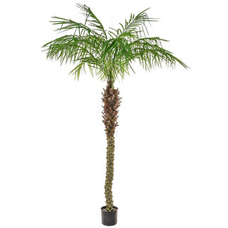 Artificial Phoenix Palm Tree 210cm
