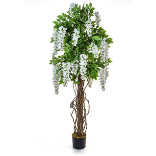 Artificial Flowering Wisteria White 160cm with Natural Tree Trunk