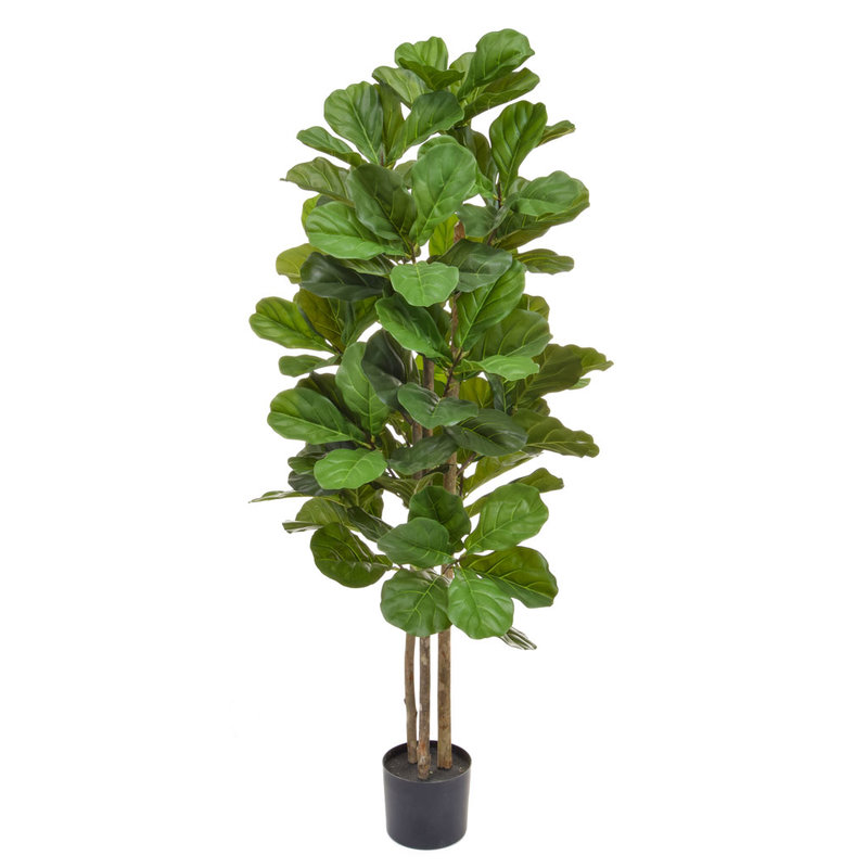 Artificial Fiddle Tree 150cm with Natural Tree Trunk/