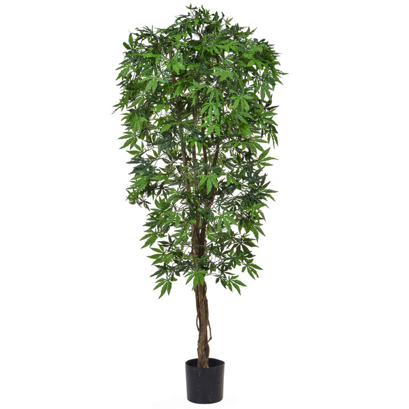 Artificial Japanese Maple Green 180cm with Natural Tree Trunk (Fire Retardant)/