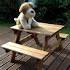 Golden Kids Wooden Picnic Table/